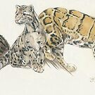 Clouded Leopard Wrap by BarbBarcikKeith