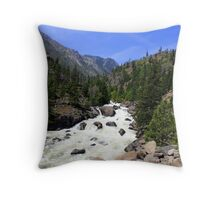 So Much Water Throw Pillow