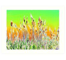 Grasses on the skyline altered image Art Print