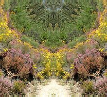 Pathway to Fairyland, altered image by hotpotato
