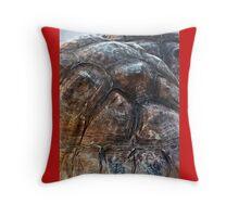 Galapagos Tortoise Shell Throw Pillow