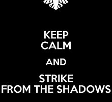 Keep Calm and Strike from the shadows by PhoenixDagger