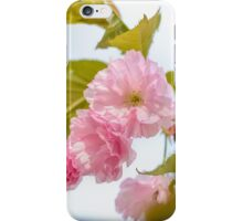 Sakura Flowers iPhone Case/Skin
