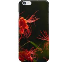 blossoms of a tree - flor de un arbol iPhone Case/Skin