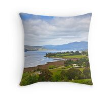 South Franklin in Spring Throw Pillow