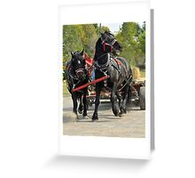 Percheron with a Problem Greeting Card