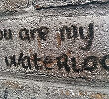 You Are My Waterloo - The Libertines by big-denze-III