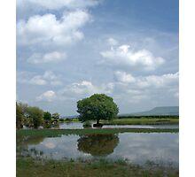 Brechfa Pool (Pwll Brechfa) Photographic Print