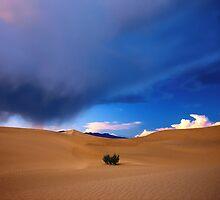'Death Valley Stormlight' by DLUhlinger