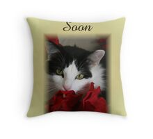 Well Wishes Throw Pillow