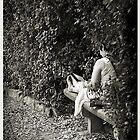 Bobali Gardens by JeanneNewman