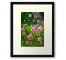 Mothers Day Spring Flowers Framed Print