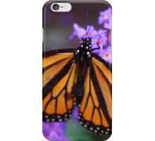 Monarch Butterfly on Lilacs iPhone Case/Skin
