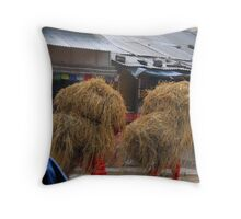 Streets of Pokhara, Nepal. Throw Pillow