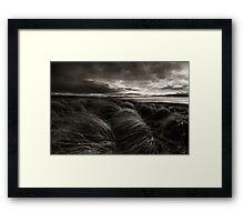 Longing, Dunnet Beach, Caithness, Scotland Framed Print