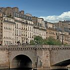 Paris On The Seine by phil decocco