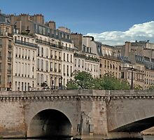 Paris On The Seine by phil decocco