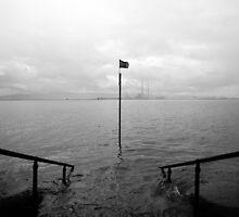 Sea Steps by DES PALMER