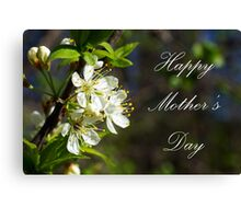 Mothers Day Spring White Flowers Canvas Print