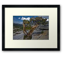 Playing a Crack Framed Print