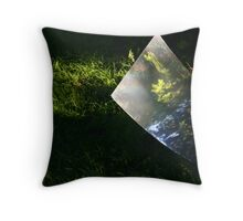 Mirror of Nature too Throw Pillow