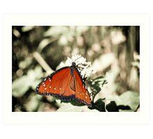 Dreaming of Butterflies Art Print