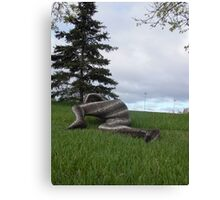 Sssssnake in the Grass set 2-4 Canvas Print