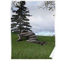 Sssssnake in the Grass set 2-4 Poster