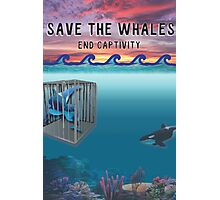 Save the Whales Photographic Print