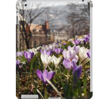 Spring in the old City - crocus Spring meadow iPad Case/Skin