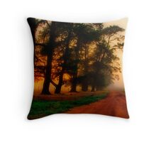 """The Mood of the Morning"" Throw Pillow"