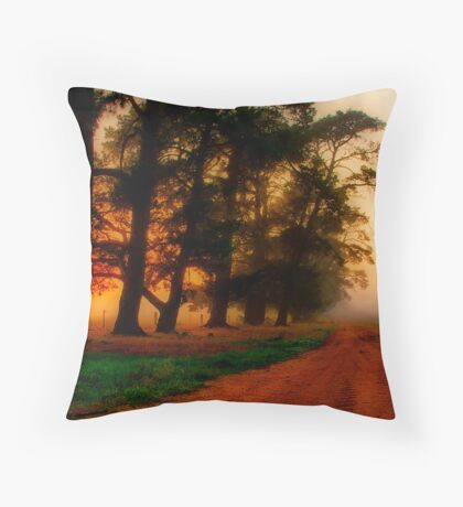 """""""The Mood of the Morning"""" Throw Pillow"""