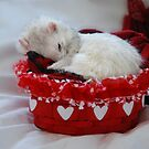 My Basket of Love by Marie-Agnes