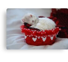 My Basket of Love Canvas Print
