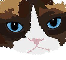 grumpy kitty by TswizzleEG