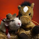 A Rat and his Horse by strickland