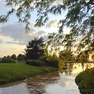 sunset at Andrew Haydon park by gregsmith
