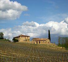 Vigna Toscana by chasingsooz