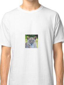 Lioness in the shade Classic T-Shirt