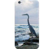 Heron fishing on Siesta Key iPhone Case/Skin