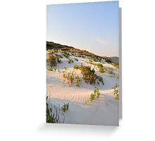 Morning Dune Greeting Card