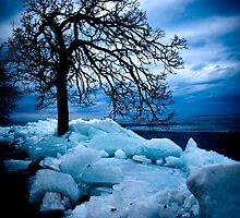 Retreating Ice by Jigsawman