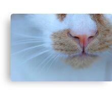 Purrsonal Close-Up Canvas Print