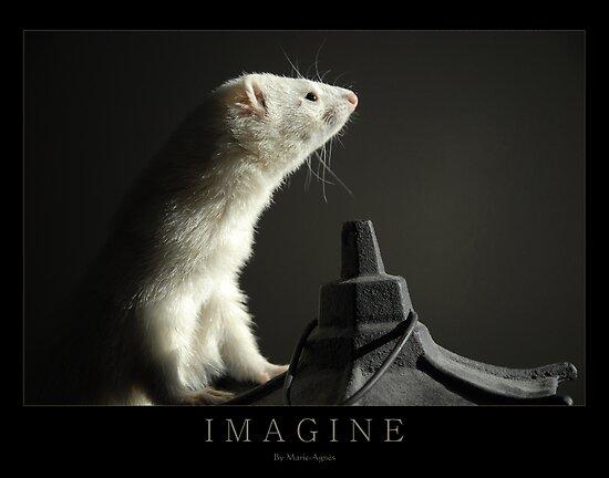 I M A G I N E by Marie-Agnes