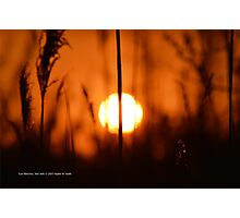 Sunset Cut In Half | East Moriches, New York  Photographic Print