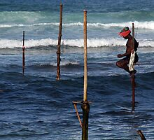 Stick Fisherman, Sri Lanka by Keith Molloy
