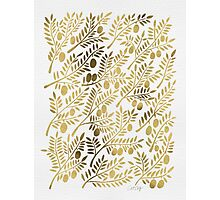 Gold Olive Branches Photographic Print