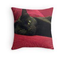 My Cat Sienna Throw Pillow