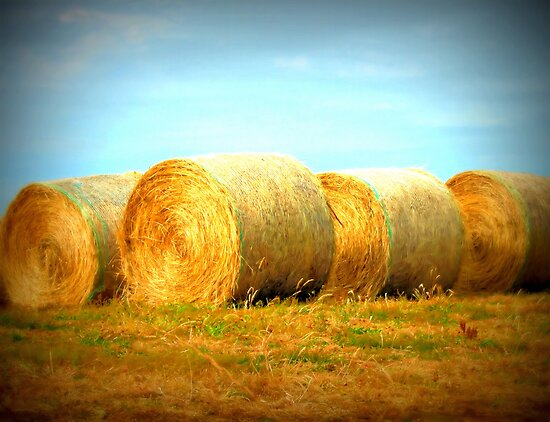 Golden Bales by JuliaWright