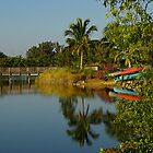 Sunrise in Ft.Myers, Florida by Zal Lazkowicz